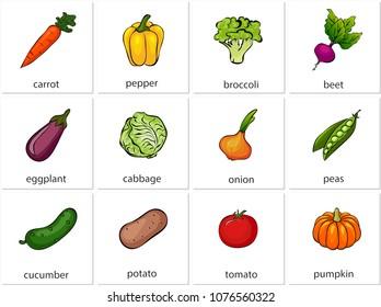 Carrot, pepper, broccoli, beet, eggplant, cabbage, onion, peas, cucumber, potato, tomato, pumpkin. Cartoon illustration