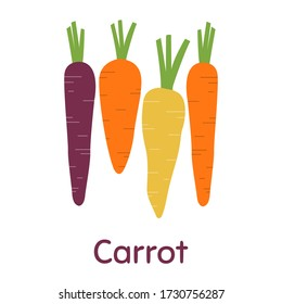 Carrot. Vegetables, vegetarian, healthy food. Colored Vector Illustration EPS. Isolated Background.