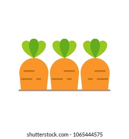 Carrots in soil, farming concept flat icon