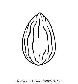 Cartoon Almond Black Line White Background