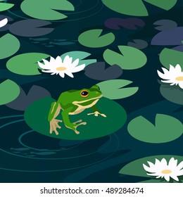 Cartoon animal vector illustration frog in a pond