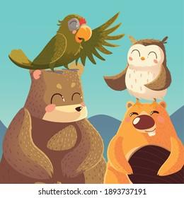 cartoon animals bear parrot beaver and owl wildlife vector illustration