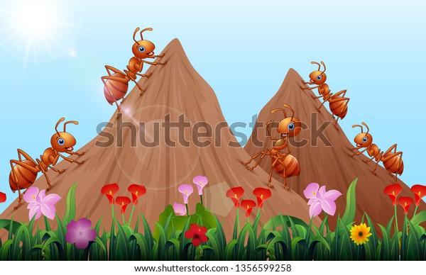Cartoon Ants Colony Ant Hill Stock Vector (Royalty Free