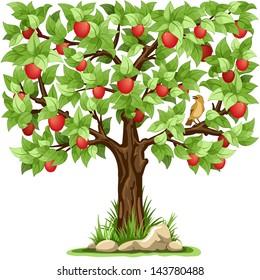 Cartoon apple tree isolated on white background