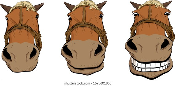 Cartoon art. The horse head is smiling. Three positions.