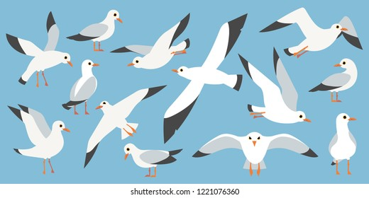 Cartoon atlantic seabird, seagulls flying in blue sky. Sea, Ocean, Gull, bird set in a vector flat style. Big oceangull pack