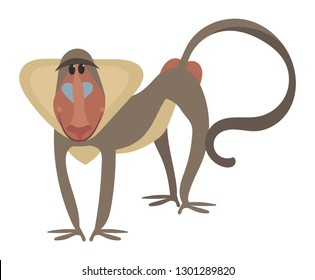 Cartoon baboon. Vector illustration of a baboon. Drawing animal for children. Zoo for kids.