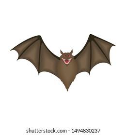 Cartoon Bats isolated on white background