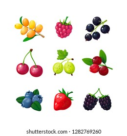 Cartoon berries. Strawberry raspberry cherry blueberry gooseberry blackberry buckthorn. Cartoon berry vector isolated set