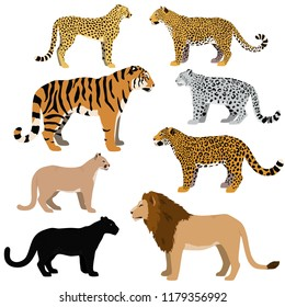 Cartoon big cats vector set. Illustration of black panther, cougar, jaguar, leopard, lion, tiger, cheetah, snow leopard.