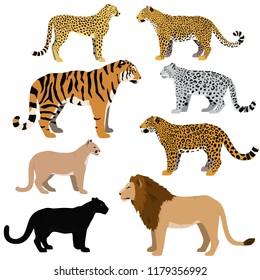 Cartoon big cats vector set. Illustration of black panther, cougar, jaguar, leopard, lion, tiger, cheetah, snow leopard.