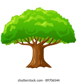 Cartoon big green tree isolated on white background. Vector illustration.