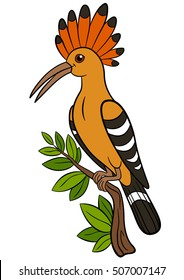 Cartoon birds. Cute beautiful hoopoe sits on the branch and smiles.