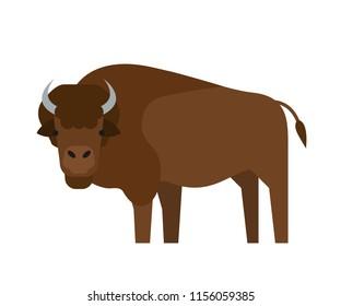 cartoon bison flat illustration on white background