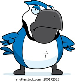 A cartoon blue jay with an angry expression.