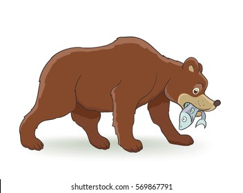 Cartoon brown bear with fish on white. vector