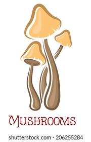 Cartoon brown and yellow forest mushrooms with text isolated on white