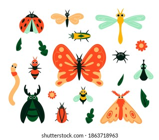 Cartoon bugs. Garden insects and plant leave or flowers. Isolated butterflies, moths and caterpillars. Beetles and spiders, flies and bees. Colorful minimalist animals, vector kids hand drawn set
