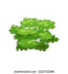 Cartoon bush illustration. Summer or spring seasonal image. Nature element for landscape design. Eco style.