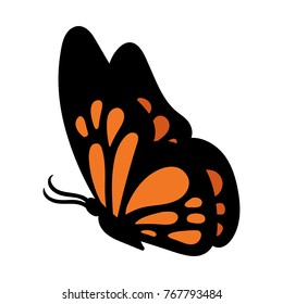 Cartoon Butterfly Vector Illustration
