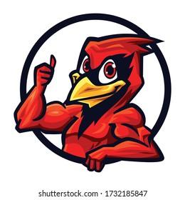 Cartoon Cardinal Mascot Logo Design