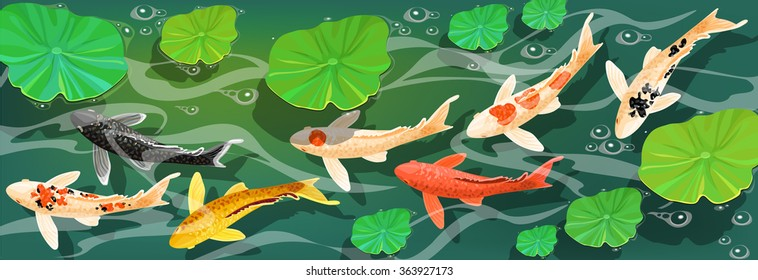 Cartoon carps koi fish. Underwater view. Vector illustration.