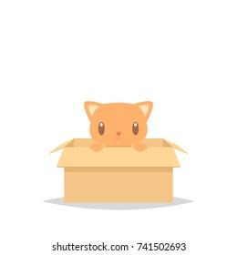 Cartoon cat in a box adoption vector illustration