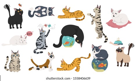 Cartoon cat characters collection. Different cat`s poses, yoga and emotions set. Flat color simple style design. Vector illustration