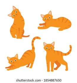 Cartoon cat set with different poses and emotions. Cat behavior and body language. Ginger kitty in simple style, isolated vector illustration.