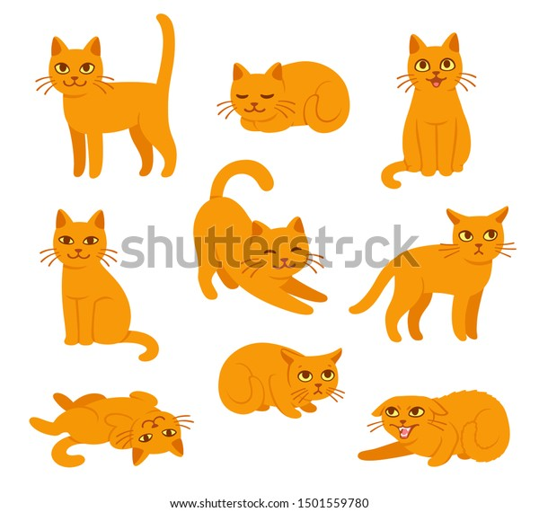 Cartoon cat set with different poses and emotions. Cat behavior, body language and face expressions. Ginger kitty in simple cute style, isolated vector illustration.