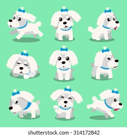 Cartoon character maltese dog poses