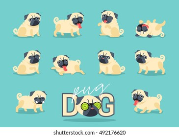 Cartoon character pug dog poses. Cute Pet dog in the flat style. Set dogs