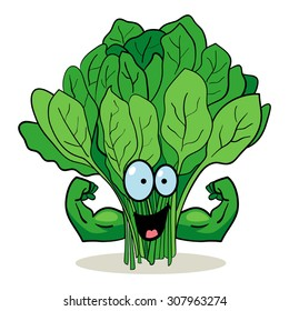 Cartoon character of spinach with muscular hands