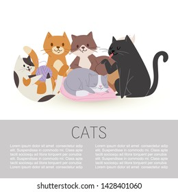 Cartoon characters cute tabby cats vector illustration isolated on a whitei with space for text. Domestic pets concept. Pussicat, tomcat, kitten and kitty playing with wool, sleeping and washing.