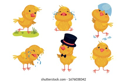 Cartoon Chicken Character Crying and Wearing Top Hat Vector Set