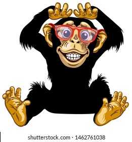 cartoon chimp ape or chimpanzee monkey with glasses smiling cheerful with a big smile on face showing teeth. Positive and happy emotion. Sitting pose. Front view. Isolated vector illustration