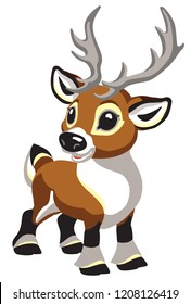 cartoon Christmas caribou deer. Tiny reindeer for babies and little kids . Isolated vector illustration