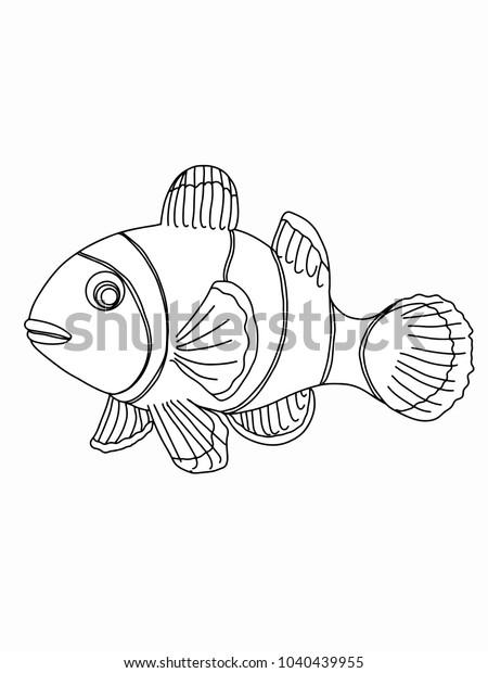 Cartoon Clown Fish Illustration Drawing Stock Vector Royalty Free