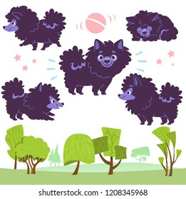 Cartoon collection of walking dogs in the park: pomeranian Spitz. Vector illustration. Isolated on white background.