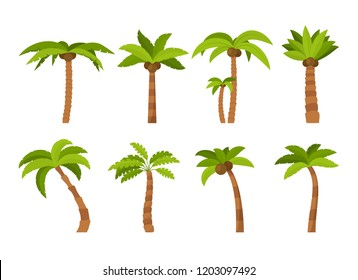 Cartoon Color Palma Tree Icon Set Tropical Exotic Nature Concept Element Flat Design Style. Symbol of Holiday. Vector illustration of Palm