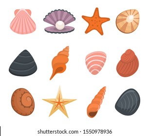 Cartoon Color Various Shells Icon Set Include of Seashell, Spiral, Scallop and Starfish. Vector illustration of Icons