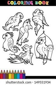 Cartoon Coloring Book Page Or Black And White Set Of Birds