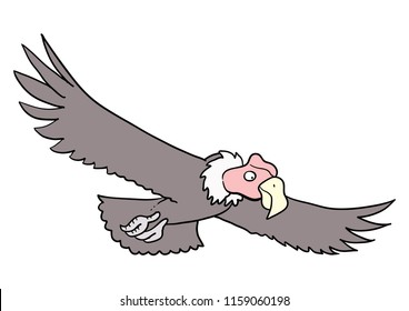 Cartoon Condor Flying