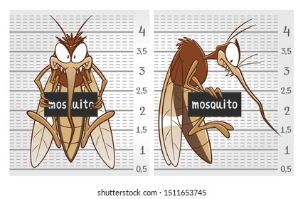 Cartoon criminal mosquito on the police lineup wall.