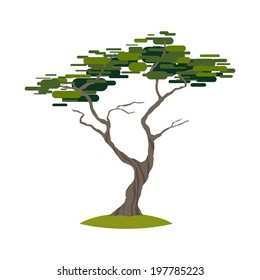 Cartoon crooked cypress tree on transparent background vector