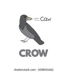 Cartoon crow flashcard. Vector illustration for children education