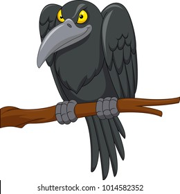 Cartoon Crow High Res Stock Images Shutterstock