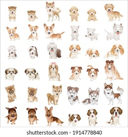 CARTOON CUTE ANIMAL DOG AND PUPPY BREEDS COLORING VECTOR SET