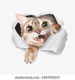 cartoon cute cat through ripped paper illustration