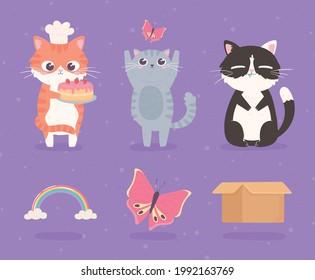 cartoon cute kitties butterfly rainbow